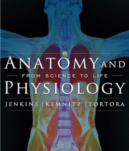 Test Bank (Download Only) for Anatomy and Physiology From Science to Life, 2nd Edition, Jenkins, 0470227583, 9780470227589