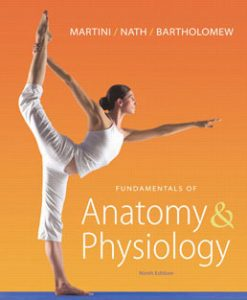 Test Bank (Download Only) for Fundamentals of Anatomy and Physiology, 9th Edition, Martini, 0321709330, 9780321709332