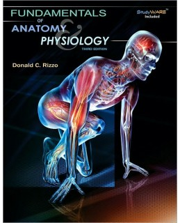 Test Bank (Download Only) for Fundamentals of Anatomy and Physiology, 3rd Edition, Donald C. Rizzo, 143543871X, 9781435438712