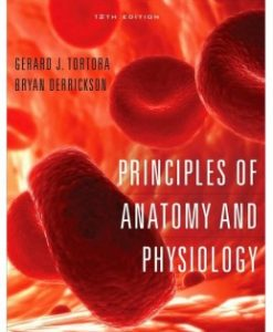 Test Bank (Download Only) for Principles of Anatomy and Physiology, 12th Edition, Gerard J. Tortora, 0470084715, 9780470084717