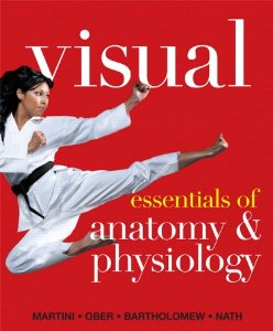 Test Bank (Download Only) for Visual Essentials of Anatomy and Physiology, Martini, 0321780779, 9780321780775