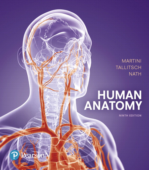 Solution Manual for Human Anatomy 9e Martini