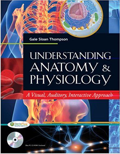 Test Bank for Understanding Anatomy and Physiology 1e by Thompson