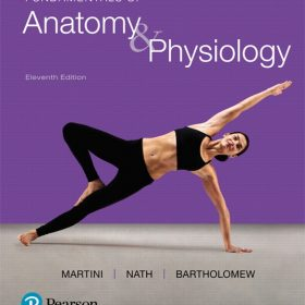 Test Bank for Fundamentals of Anatomy & Physiology 11e Martini