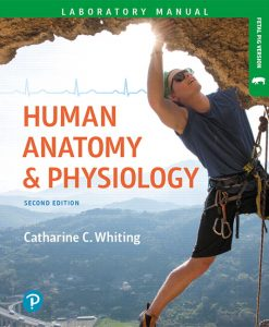 Solution Manual (Download Only) For Human Anatomy & Physiology Laboratory Manual: Making Connections, Fetal Pig Version, 2nd Edition By Catharine C. Whiting ISBN-13:9780134759449