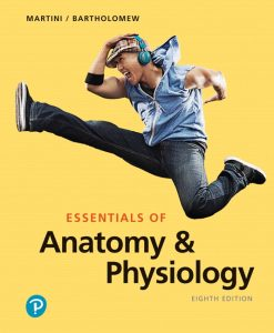 Solution Manual For Essentials of Anatomy & Physiology, 8th Edition by Frederic H. Martini,Edwin F. Bartholomew,ISBN-13:9780135210741